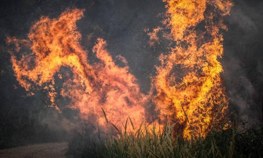 Φωτιά τώρα στα Άνω Λιόσια | Pentapostagma