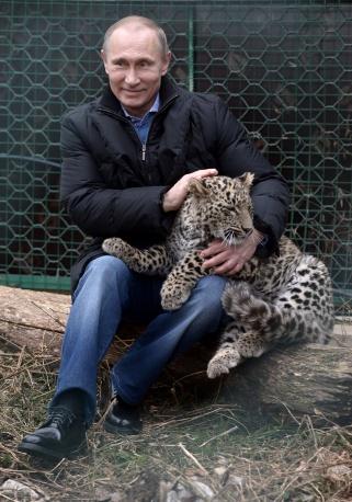 Όπως βλέπετε τα πάω καλά με τις γάτες της Περσίας