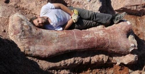 βρήκαν-τον-μεγαλύτερο-δεινόσαυρο-που-έζησε-ποτέ-στη-Γη-2