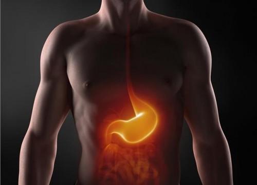 το-στομάχι-είναι-ο-δεύτερος-εγκέφαλος