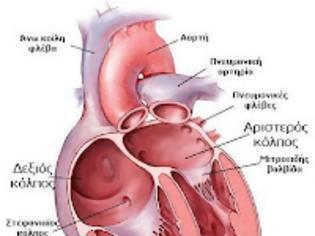 όσα-δεν-θέλουν-οι-φαρμακευτικές-και-οι-καρδιολόγοι-να-γνωρίζουμε