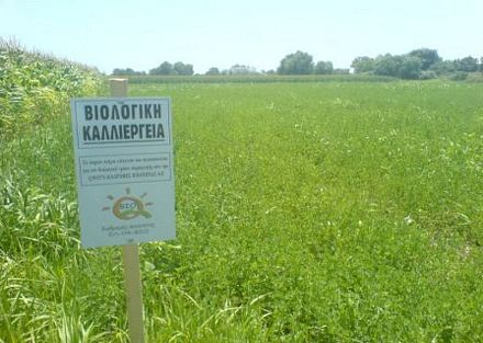 βιολογικές-καλλιέργειες