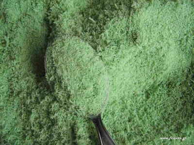 φτιάχνω-οικολογικό-εντομοκτόνο-για-προστασία-φυτών