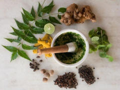 download-τα-φαρμακευτικά-φυτά-της-Ελλάδας