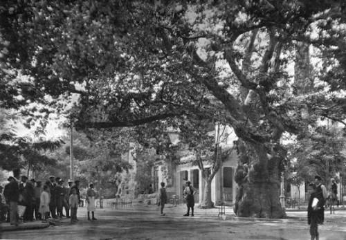 αριστουργηματικές-φωτογραφίες-από-την-Ελλάδα-του-1900-1946-5