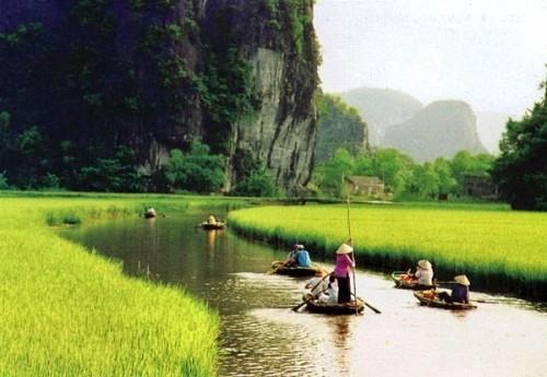μαγευτική-διαδρομή-στους-ορυζώνες-του-βιετνάμ-φωτογραφίες