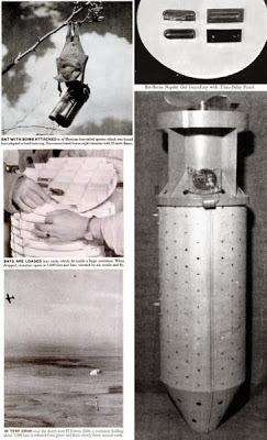 Νυχτερίδες ναπάλμ: Ενα αμερικανικό πειραματικό βιολογικό όπλο!