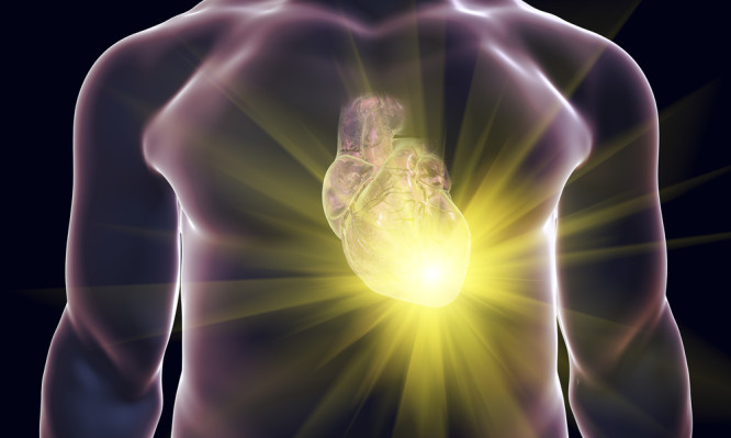Αποτέλεσμα εικόνας για Η υγιεινή της καρδιάς