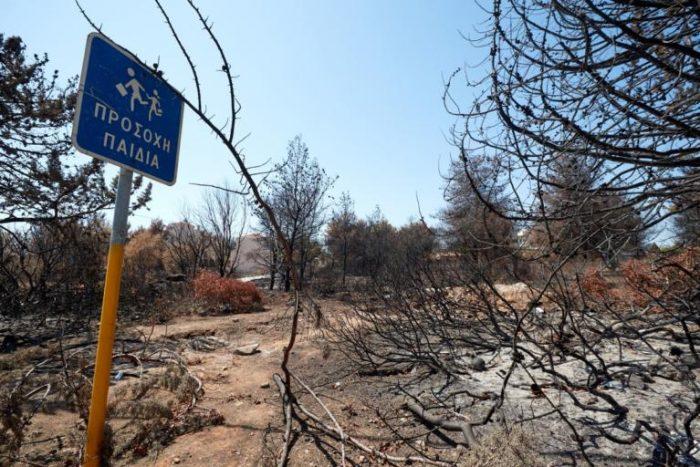 23147bf6c8b7 1980 – 2017  Πάνω από 16 εκατομμύρια στρέμματα δασών έχουν κάψει οι φωτιές  στην Ελλάδα
